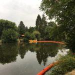 Uferreingung